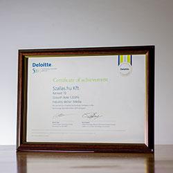 Deloitte 2015 Technology Fast 50 Central Europe